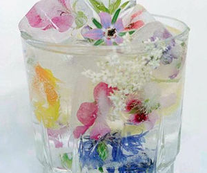 drink, floral, and ice cube image