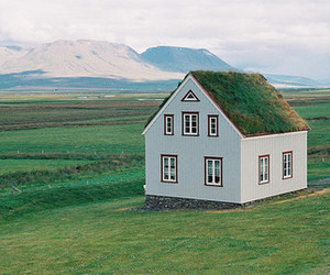 green, house, and photography image