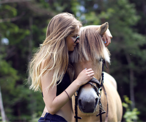 horse, love, and beautiful image