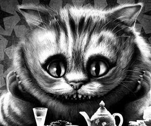 alice in wonderland, cat, and black and white image