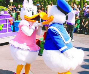 disneyland, donald duck, and cute image