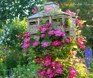 birdhouse, garden, and nature image