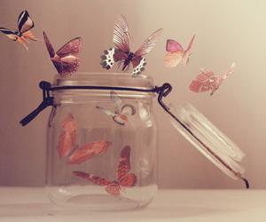 borboletas, lindas, and photography image