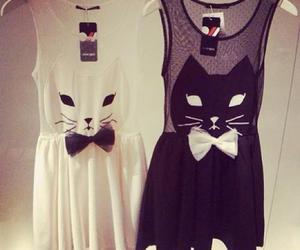 dress, cat, and black image