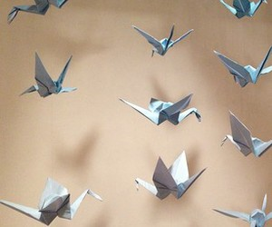 bird, origami, and Paper image