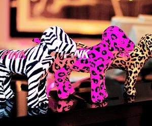 pink, dog, and Victoria's Secret image