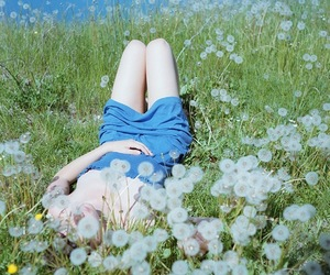 dandelion, photography, and flower field. girl image