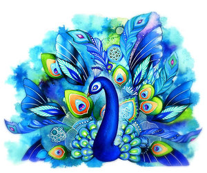 beautiful, blue, and peacock image