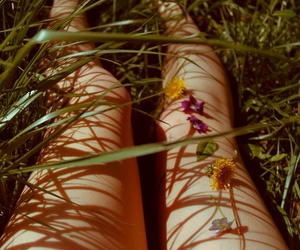 flowers, legs, and grass image