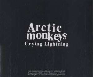 arctic monkeys image