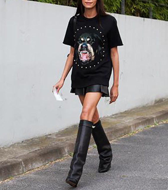 Givenchy Rottweiler Uploaded By Mintgirl On We Heart It