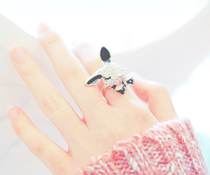 accessorie, bunny, and fashion image