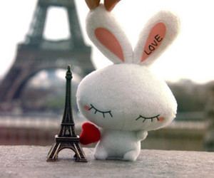 paris, love, and bunny image
