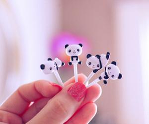 panda, cute, and pink image