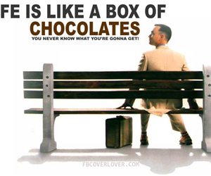 chocolate and forrest gump image