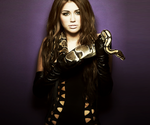 miley cyrus, miley, and snake image