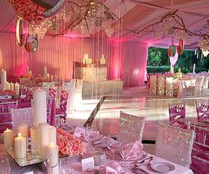 dining, gorgeous, and pink image