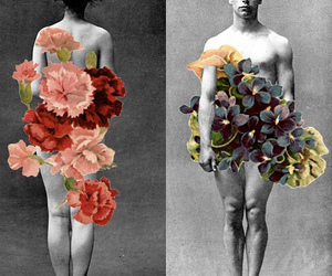 art, Collage, and floral image