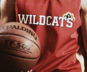 wildcats and high school musical image