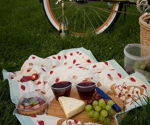 cheese, picnic, and wine image