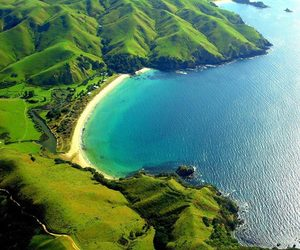 nature and new zealand image