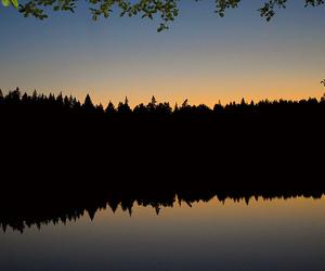 finland, lake, and nature image