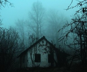 house, dark, and forest image