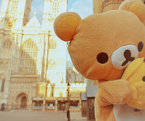rilakkuma, cute, and bear image