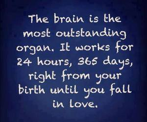 love, brain, and quote image