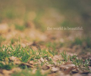 beautiful, world, and text image