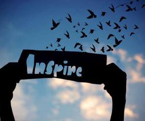 inspire, bird, and sky image