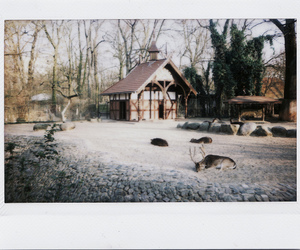 house, polaroid, and winter image
