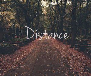 beautiful, quotes, and :$ image