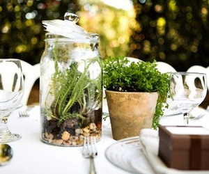 centerpiece, green, and home image