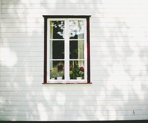 photography, vintage, and window image