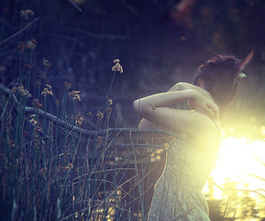 photography, forest, and girl image