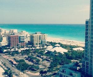 beach, Miami, and palms image