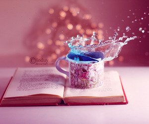 book and photography image
