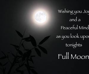 full moon and nature image