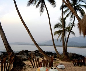 nature, africa, and beach image