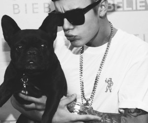 justin bieber, dog, and m&g image