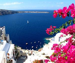 Greece, flowers, and sea image