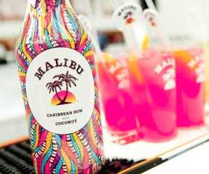 malibu, drink, and summer image