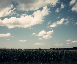 blue, clouds, and corn image