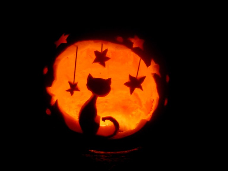 Cat Carved Pumpkin Shared By Carolinℯ Roy On We Heart It