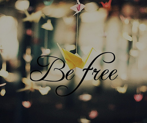 be free, beauty, and birds image