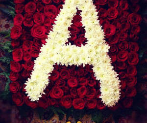 a and pretty little liars image