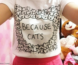 clothing; cats image