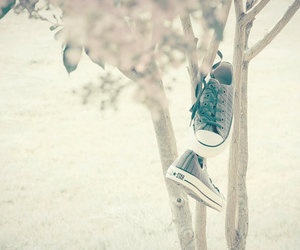 shoes, tree, and photography image