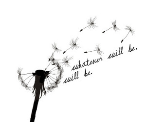 quotes, dandelion, and life image